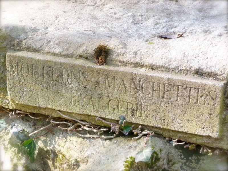 Mouflons à Manchettes d'Algérie, Jardin des Plantes de Nantes